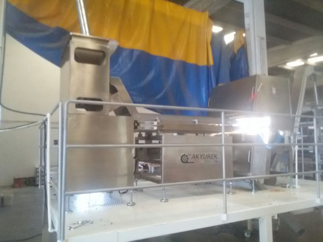 Belt Type Color Sorter Machine in Turkey