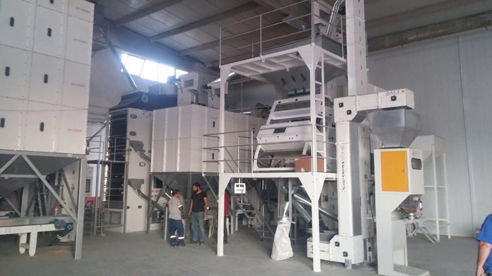 BERKİZ GIDA / 10 T/H chickpea cleaning plant