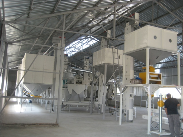 Continuous Seed Treating Machine