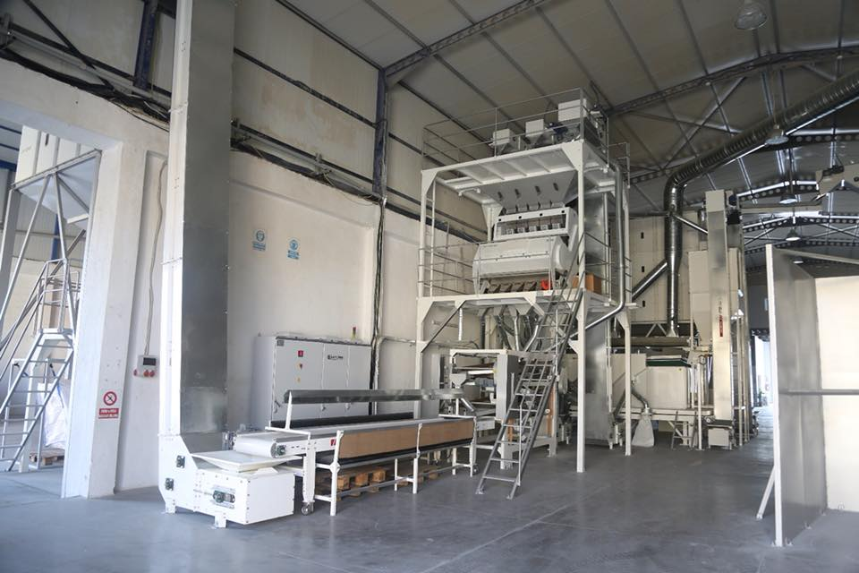 Pulse Processing Plant 5 Tons / Hour