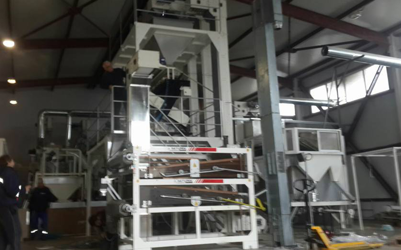 Sunflower seed color sorting machine