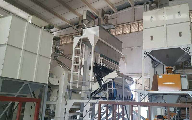Sunflower Seed Color Sorting Machine and Trieur