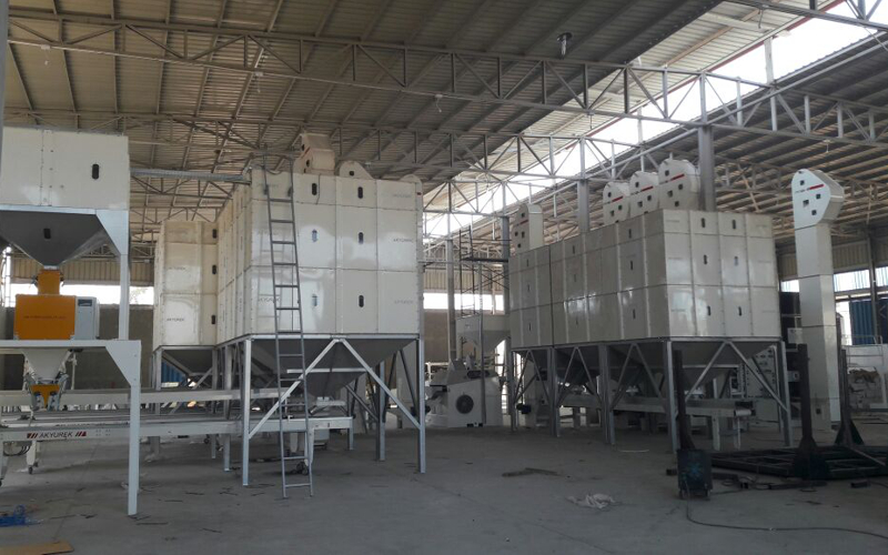 Turnkey Seed Conditioning Plant Turnkey Project in Egypt
