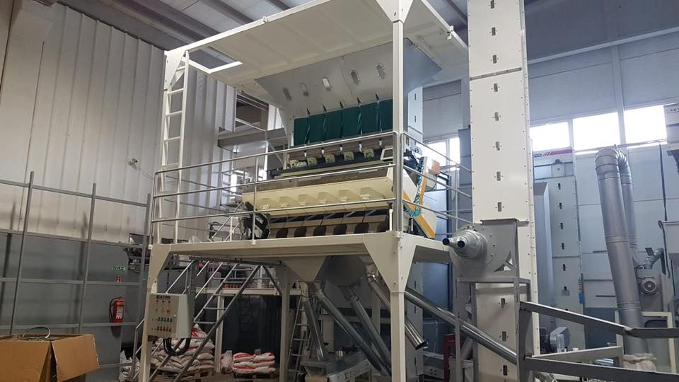 White Sunflower Seed Color Sorting Plant