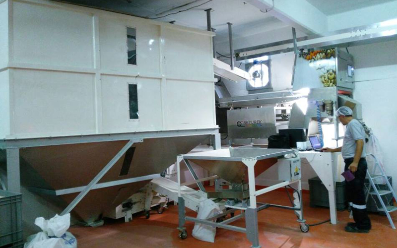 New Generation Sorturk Horizontal Belt Colour sorter machine