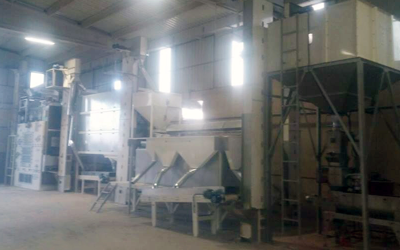 10T/H Seed Screening Cleaning Facility