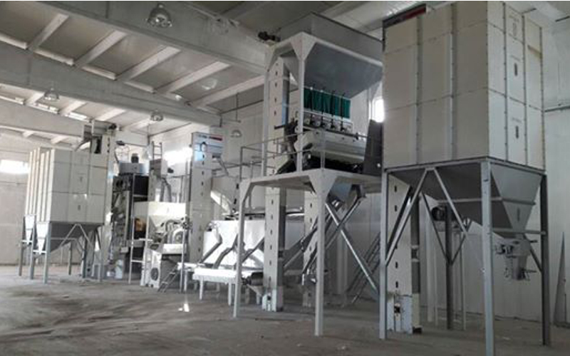 2T/H Sunflower seed cleaning screening facility