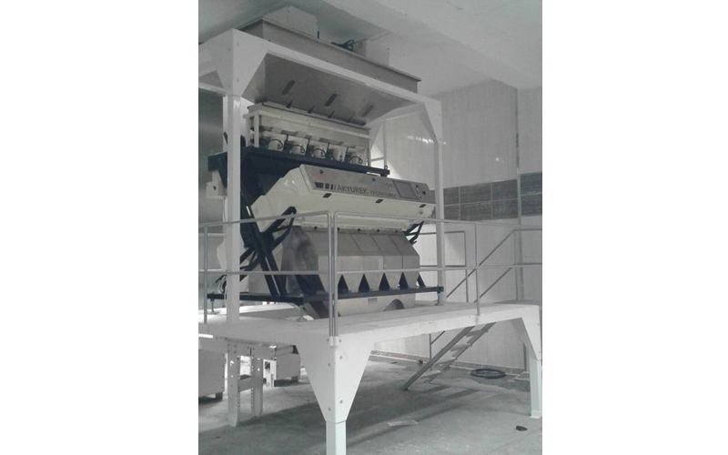 Colour Sorter Machine 3T/H capacity Sesame Cleaning