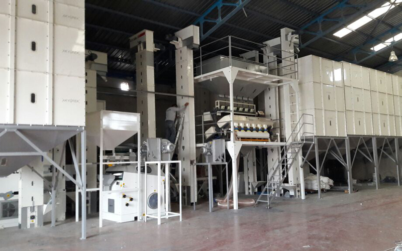 3 T/H Sunflower-Pumpkin Seed Cleaning Plant